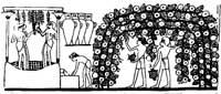 Сбор винограда и получение сока